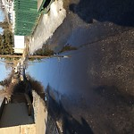 Road Flooded/Drain Blocked at 8823 161 St NW West Edmonton