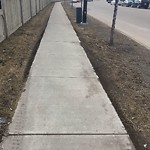 City Maintained Sidewalk at 742 WELSH DRIVE SW