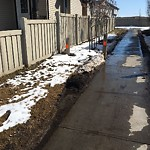 City Maintained Sidewalk at 6903 19A AVENUE SW