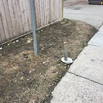City Maintained Sidewalk at 11215 104 AVENUE NW