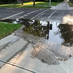 Road Flooded/Drain Blocked at 10204 130 Street NW