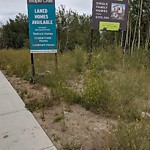 Noxious Weeds - Public Property at 3904 Meridian Street NW